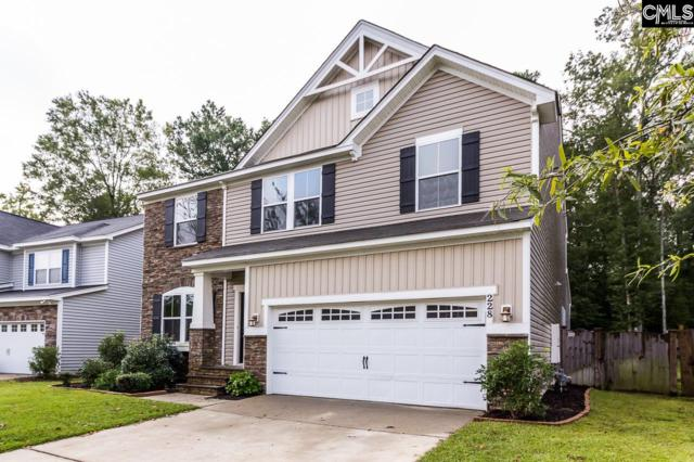 228 Garden Brooke Drive, Irmo, SC 29063 (MLS #432834) :: The Olivia Cooley Group at Keller Williams Realty