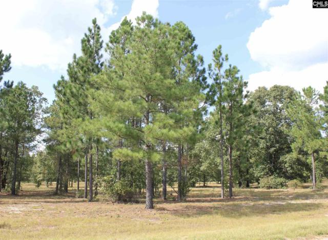 378 Hound Hollow Road, Camden, SC 29020 (MLS #432898) :: Home Advantage Realty, LLC
