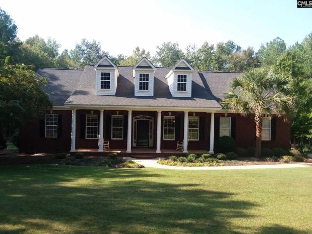 125 John Lindler, Chapin, SC 29036 (MLS #432903) :: Exit Real Estate Consultants