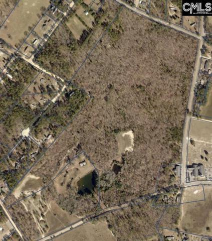 0 Oakey Springs Drive, Gaston, SC 29053 (MLS #432907) :: Home Advantage Realty, LLC