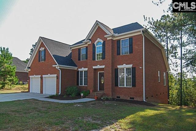 245 Polo Hill Road, Columbia, SC 29223 (MLS #432966) :: EXIT Real Estate Consultants