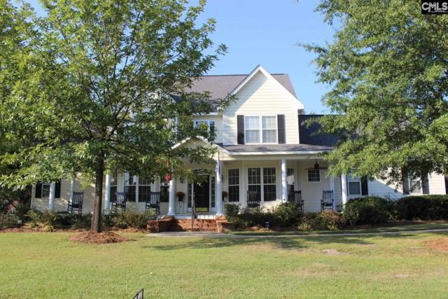 410 Caro Lane, Chapin, SC 29036 (MLS #433003) :: Home Advantage Realty, LLC