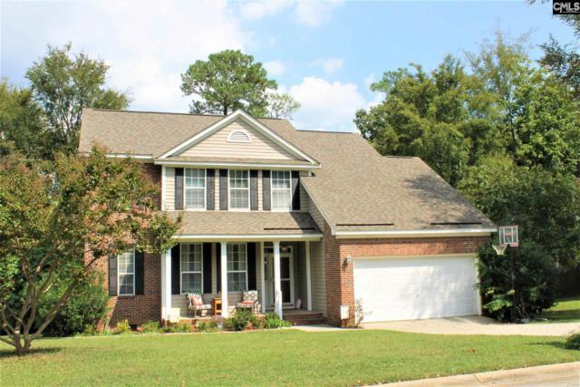 16 Glenhawk Loop, Irmo, SC 29063 (MLS #433034) :: Exit Real Estate Consultants