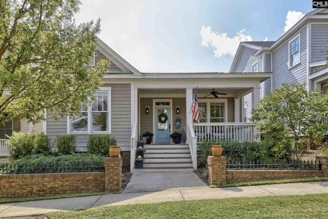 220 Shoalwood Drive, Lexington, SC 29072 (MLS #433115) :: Home Advantage Realty, LLC