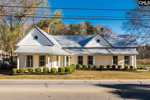 231 Columbia Avenue, Chapin, SC 29036 (MLS #433117) :: Home Advantage Realty, LLC