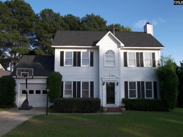 234 Aston Lane, Lexington, SC 29072 (MLS #433131) :: Home Advantage Realty, LLC