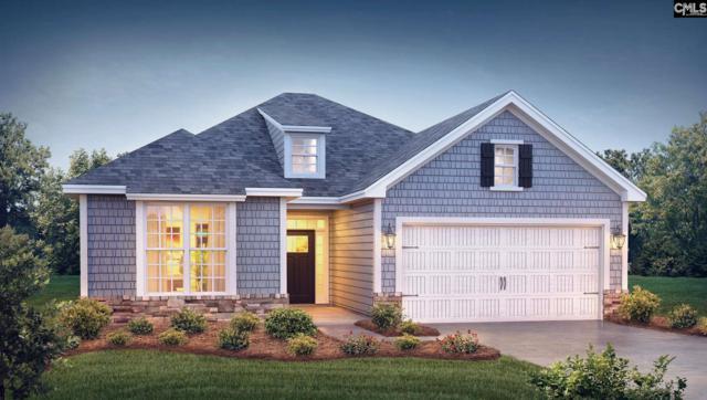 129 Blue Spruce Court #0364, Blythewood, SC 29016 (MLS #433169) :: Home Advantage Realty, LLC
