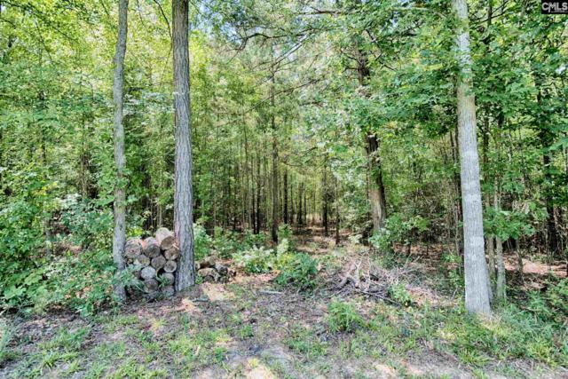 Lot 124 Blacksgate East Road, Prosperity, SC 29127 (MLS #433465) :: EXIT Real Estate Consultants