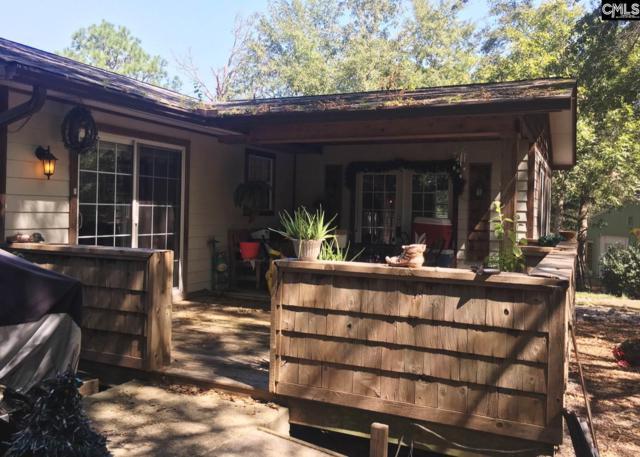 109 Buck Corely Road, Lexington, SC 29073 (MLS #433833) :: Home Advantage Realty, LLC