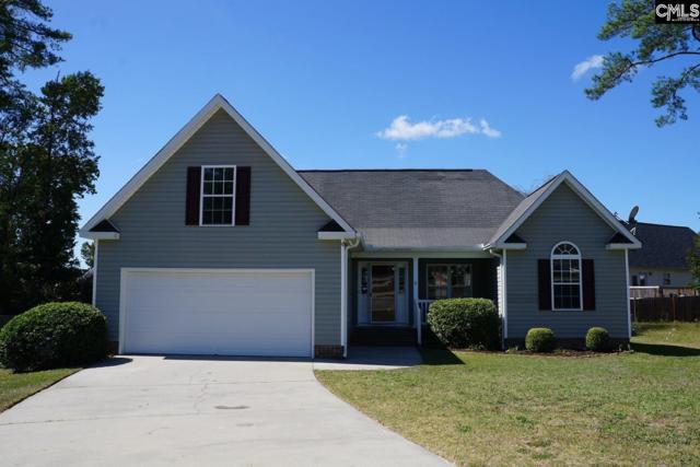 12 Long Needle Court, Columbia, SC 29229 (MLS #434021) :: Home Advantage Realty, LLC