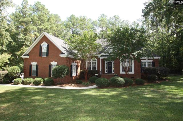 164 Rocky Meadow Drive, Gilbert, SC 29054 (MLS #434118) :: Exit Real Estate Consultants