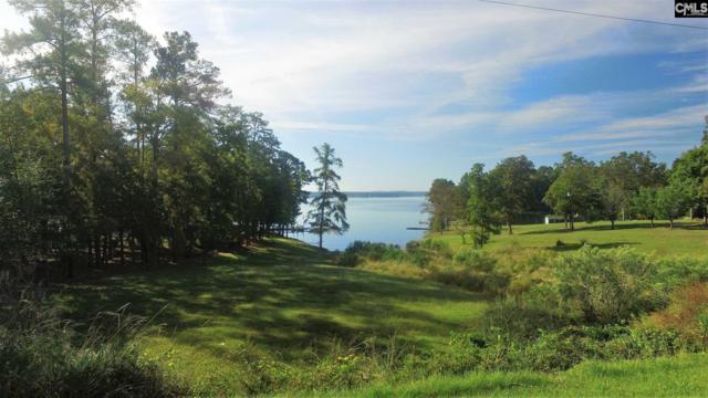 1920 Amick Drive, Gilbert, SC 29054 (MLS #434250) :: Exit Real Estate Consultants