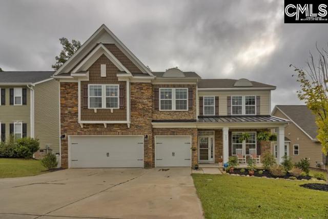 408 Slipstream Lane, Chapin, SC 29036 (MLS #434327) :: Home Advantage Realty, LLC