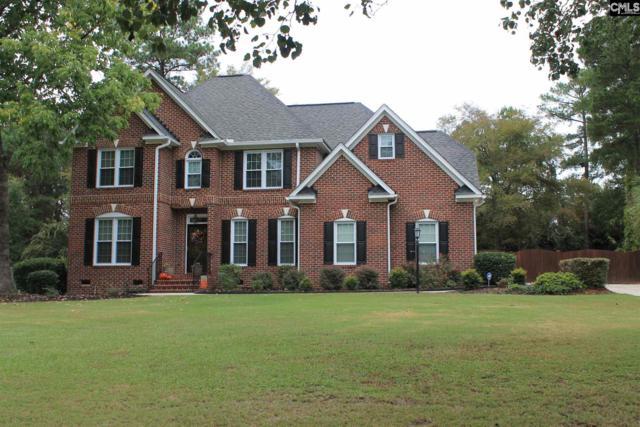 113 Racket Road, Chapin, SC 29036 (MLS #434357) :: Home Advantage Realty, LLC