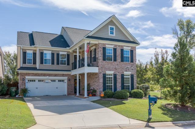 725 Moonsail Circle, Chapin, SC 29036 (MLS #434359) :: Home Advantage Realty, LLC