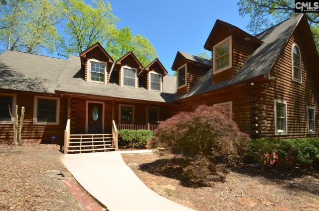 129 Tiger Paw Lane, Irmo, SC 29063 (MLS #434385) :: The Olivia Cooley Group at Keller Williams Realty