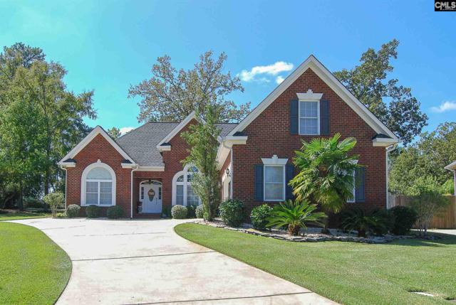 4 Elm Spring Court, Chapin, SC 29036 (MLS #434387) :: The Olivia Cooley Group at Keller Williams Realty
