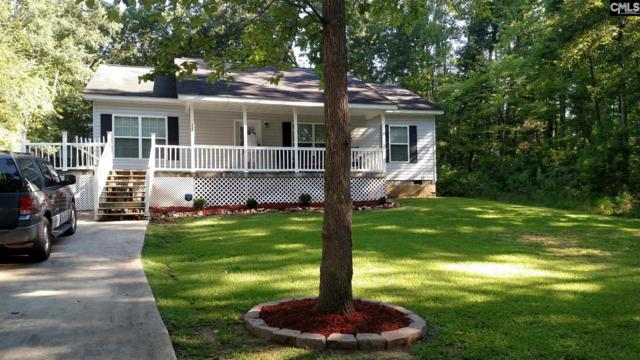 537 Newberry Drive, Chapin, SC 29036 (MLS #434395) :: The Olivia Cooley Group at Keller Williams Realty