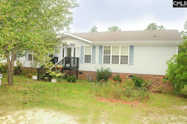 251 Howitzer Circle, West Columbia, SC 29170 (MLS #434453) :: The Olivia Cooley Group at Keller Williams Realty