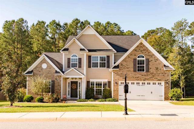 313 Eagle Claw Drive, Chapin, SC 29036 (MLS #434459) :: The Olivia Cooley Group at Keller Williams Realty