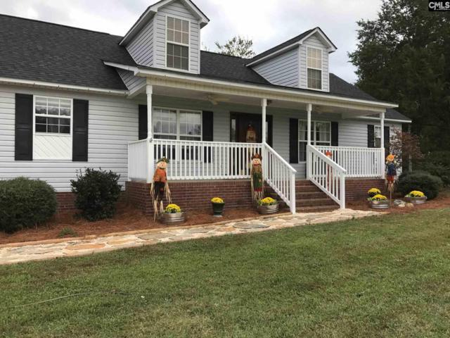 1126 Sc Highway 219, Prosperity, SC 29127 (MLS #434483) :: Home Advantage Realty, LLC