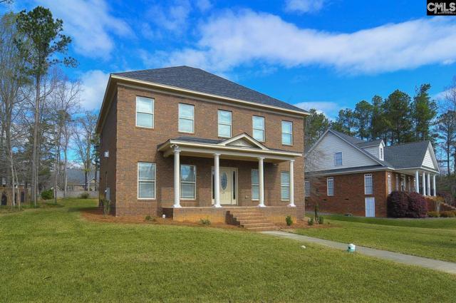 113 Night Harbor Drive, Chapin, SC 29036 (MLS #434491) :: Home Advantage Realty, LLC