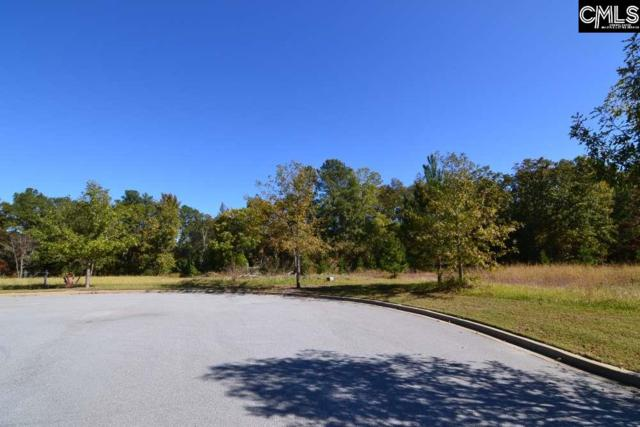 10 Blythe View Court #13, Blythewood, SC 29016 (MLS #434557) :: EXIT Real Estate Consultants
