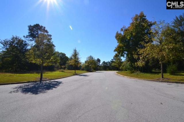 2 Blythe View Court #15, Blythewood, SC 29016 (MLS #434560) :: EXIT Real Estate Consultants