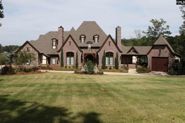 159 Duck Point Lane, Chapin, SC 29036 (MLS #434659) :: Home Advantage Realty, LLC