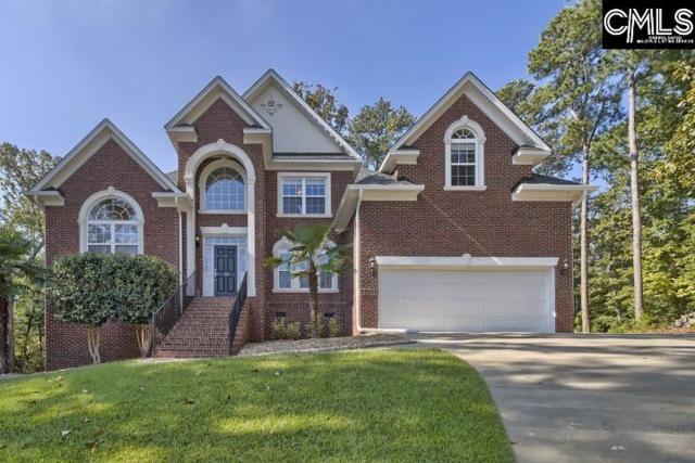 105 Summit View Court, Chapin, SC 29036 (MLS #434695) :: Home Advantage Realty, LLC