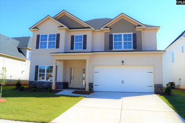 609 Ladybug Lane, Lexington, SC 29072 (MLS #434762) :: Home Advantage Realty, LLC