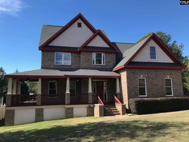 213 Headwater Circle, Irmo, SC 29063 (MLS #434816) :: Home Advantage Realty, LLC
