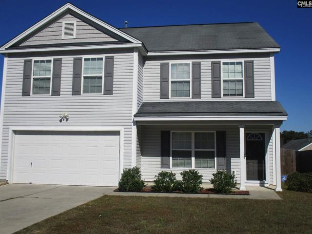 253 Summer Park, Columbia, SC 29223 (MLS #434820) :: Home Advantage Realty, LLC