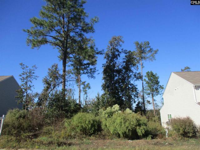 143 Chesterbrook, Lexington, SC 29072 (MLS #434821) :: Home Advantage Realty, LLC