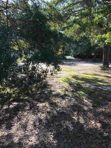 1611 D Avenue, West Columbia, SC 29169 (MLS #435140) :: Home Advantage Realty, LLC