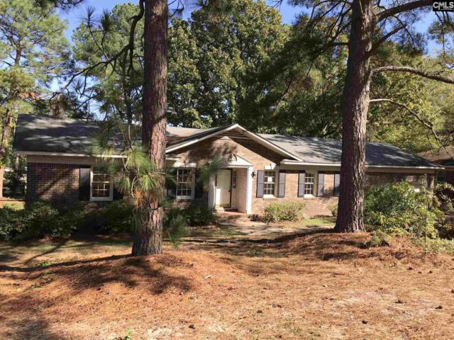 143 Boulters Lock Road, Irmo, SC 29063 (MLS #435322) :: Exit Real Estate Consultants
