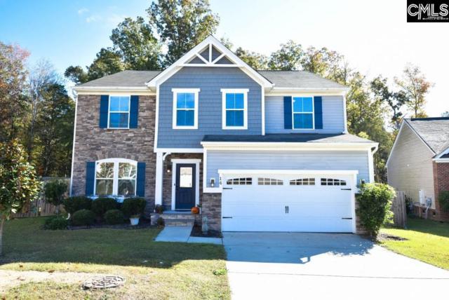 14 Tindal Ridge Point, Irmo, SC 29063 (MLS #435515) :: Home Advantage Realty, LLC