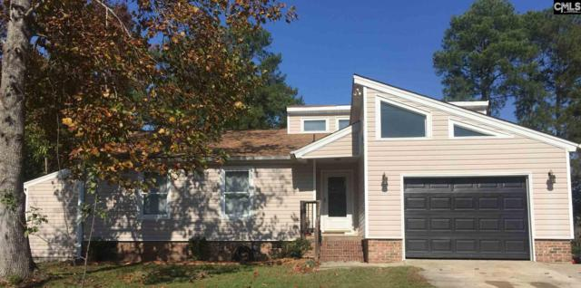 2438 Old Barnwell Road, Lexington, SC 29073 (MLS #435610) :: Exit Real Estate Consultants