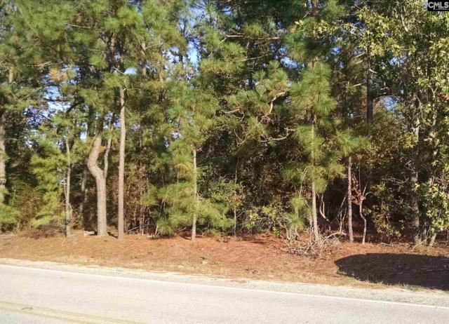 1427 Juniper Springs Road, Gilbert, SC 29054 (MLS #435865) :: Exit Real Estate Consultants