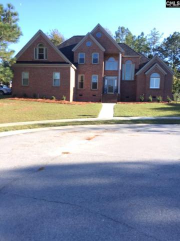 1 Coopersmith, Columbia, SC 29229 (MLS #436065) :: Home Advantage Realty, LLC