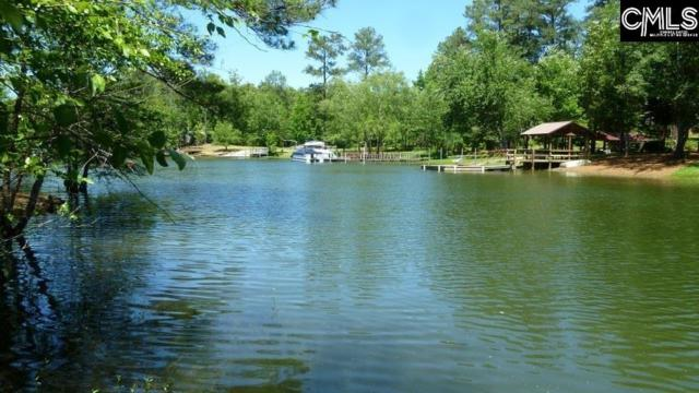 213 Embree Lane, Gilbert, SC 29054 (MLS #436097) :: Exit Real Estate Consultants