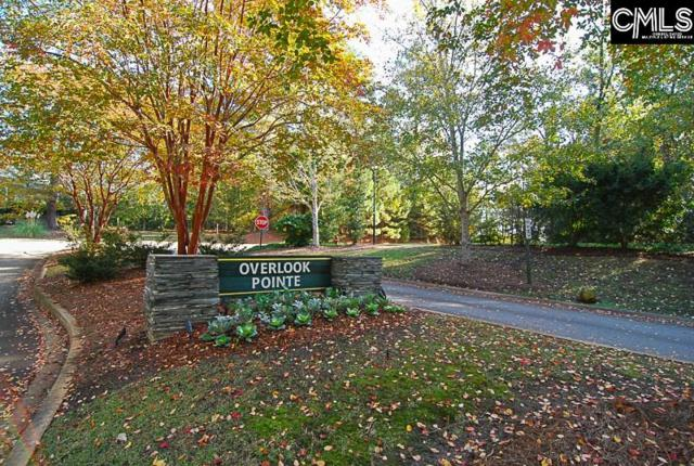 100 Pointe Overlook Road, Chapin, SC 29036 (MLS #436294) :: Picket Fence Realty