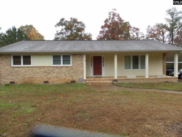 1060 Old Bush River Road, Chapin, SC 29036 (MLS #436326) :: Picket Fence Realty