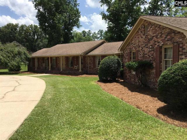 215 Cherokee Trail, Lexington, SC 29072 (MLS #436399) :: Picket Fence Realty