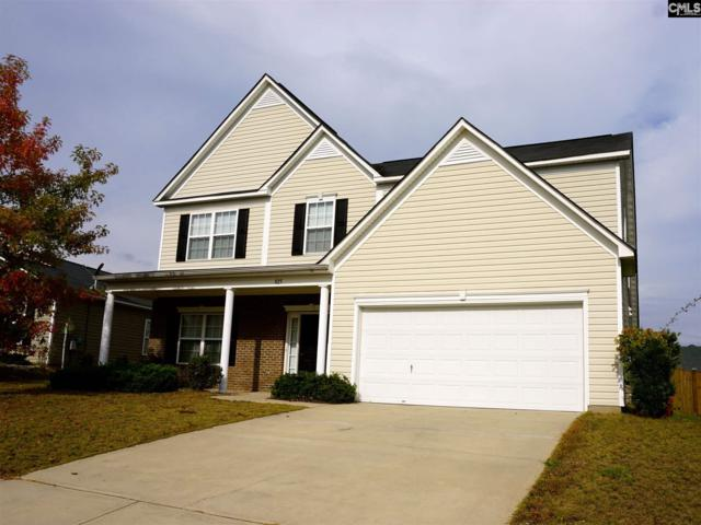 825 Wing Stripe Court, Columbia, SC 29229 (MLS #436402) :: The Olivia Cooley Group at Keller Williams Realty