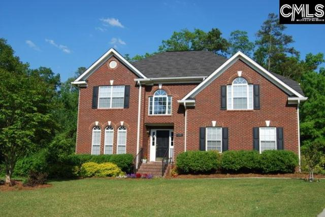10 Coldwater Court, Irmo, SC 29063 (MLS #436532) :: Exit Real Estate Consultants