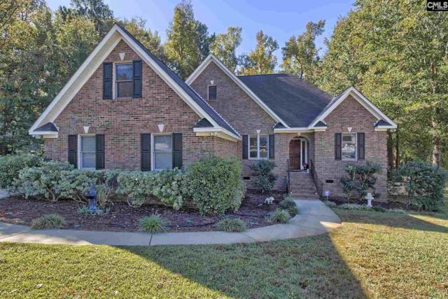 15 Falbrook Court, Irmo, SC 29063 (MLS #436552) :: Exit Real Estate Consultants