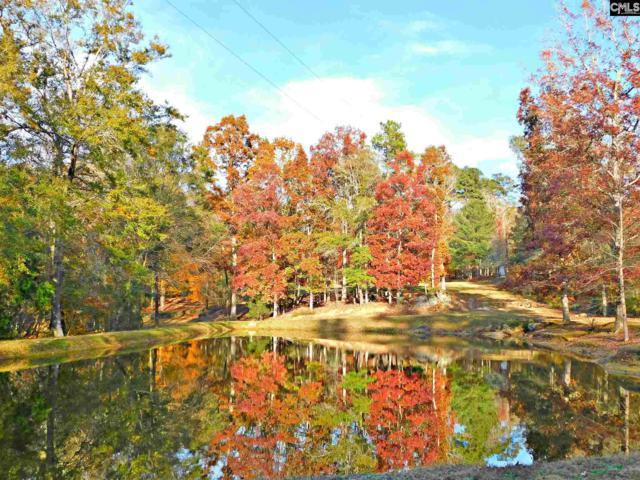 0 Batesburg, Batesburg, SC 29006 (MLS #436733) :: Home Advantage Realty, LLC