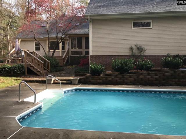117 Pebble Creek Road, Chapin, SC 29036 (MLS #436757) :: Home Advantage Realty, LLC