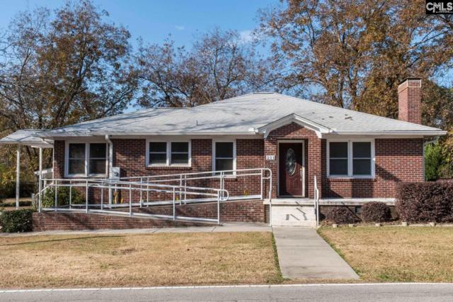 209 E Boundary Street, Chapin, SC 29036 (MLS #437229) :: EXIT Real Estate Consultants